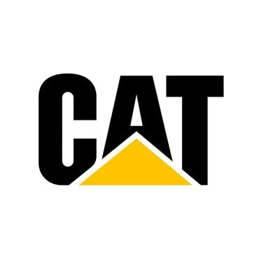 Εικόνα για την κατηγορία CAT